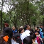 Ashiana children on Nature walk with experts from Chandigarh Tree Lovers Club